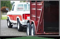 Car and Horsebox, MSM Training